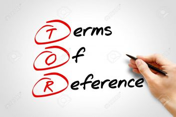 Summaries and Issues in the ICC Terms of Reference: The Right Level of Case Management
